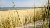 vazio : Beach of the Baltic sea with beach grass, wind and Baltic sea in the background