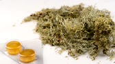 homeopati : Iceland moss with cough tablets on a turn table