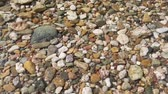 relax : Pebbles on the sunny beach