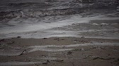 lodo : Dirty foam on the water and the seashore, eutrophication, pollution of the reservoir, ecological problem. Water pollution. Sewage, dirty, polluted water on a beach Stock Footage