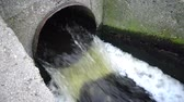 мутный : Dirty water flows from the pipe into a natural pond. Environmental pollution. Sewage, treatment facilities, dirty foam, bacteria.