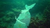 лом : Plastic garbage and other debris floating underwater. Marine pollution. Plastic debris in the water, killing wildlife