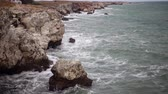 zoologia : Storm on the sea in the Black Sea, stone coast, Bulgaria, near the village of Tyulenovo