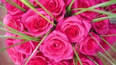 Beautiful blossoms of red roses. Bouquet of flowers close-up