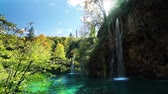 leaf : waterfall in forest Plitvice Lakes National Park, Croatia