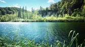 arbusto : Lake in deep forest, Plitvice, Croatia Stock Footage