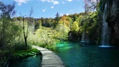 croácia : way in forest, Plitvice lakes, Croatia Stock Footage