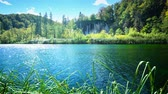 croácia : Lake in deep forest, Plitvice, Croatia Stock Footage
