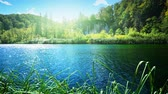 yansıma : Lake in deep forest, Plitvice, Croatia Stok Video
