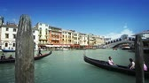 italy : Rialto bridge in Venice, Italy Stock Footage