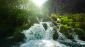 flow : Waterfall in forest, Plitvice, Croatia Stock Footage