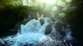 croácia : Waterfall in forest, Plitvice, Croatia Stock Footage