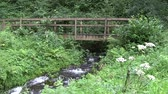 woodbridge : Wooden bridge over a fast flowing mountain stream