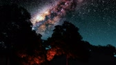 kosmos : trees and Milky Way stars at night. Wideo