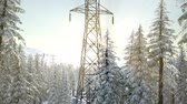 pólus : electric line at sunrise in snow covered forest
