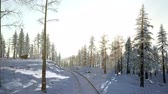 крайняя местности : 4K Aerial Snow Covered Trees Drone Footage Landscape Winter