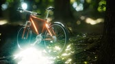всадник : Mountain bike on the forest path