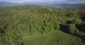paysage : Aerial, Réserva Forestal Golfo Dulce, Costa Rica, natif