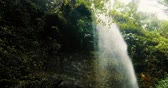 moha : De Los Tilos Waterfall, LaPalma, Canaries - graded Version