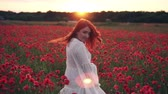 bieg : Happy red-haired woman whirls in a flowering poppy field at sunset, rear view Wideo
