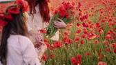 anleihen : Young mother with little daughter collect red poppy flowers in a blossoming field, close up, slow motion