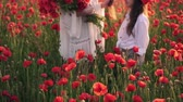 coquelicot : Happy mother and little daughter stand in blooming field in wreaths of wild poppy flowers, Steadicam shot Vidéos Libres De Droits