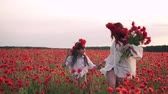 bieg : Happy mom and daughter are running through blooming poppy field at sunset, slow motion