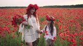 ポピー : Happy mother and daughter go on blossoming poppy field at sunset, slow motion