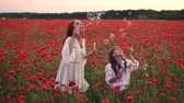 snadnost : little girl with her mother playing with soap bubbles in flowering field of poppies, slow motion