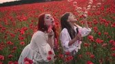 kolaylık : Happy little girl and her mom blow soap bubbles in blooming field of red poppies, slow motion