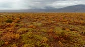 сентябрь : Aerial view of colorful autumn landscape in national park Thingvellir, Iceland, slider shot