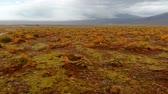 сентябрь : Aerial view of colorful autumn landscape in national park Thingvellir, Iceland, drone rotates