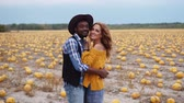 異人種間の : A young interracial couple stands embracing in a pumpkin field. 動画素材