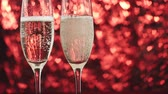 espumante : Champagne is poured into a glass on a red background with many hearts. Valentines day concept.