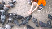 migalhas : two little girls, sisters feed pigeons in the Park. children in outdoor