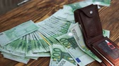 european currency : money wallet falls on euro banknotes