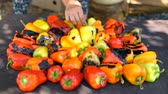 acompanhamento : Red and yellow sweet pepper cooking on the grill over coals. Vídeos