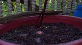 Winemaking. Mixing cap of grape skins. Steadicam shoot.