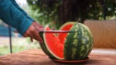 スイカ : Woman cut watermelon on a wooden table.