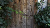 Green doors. Wood texture. Old wooden doors. Steadicam shot. Stock Footage