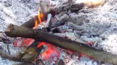 çatırtı : Hot fireplace full of wood and fire. Burning fire and bright coals.