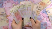 hryvnia : Businessmans hands counting money hryvnia. Counting Ukrainian money.