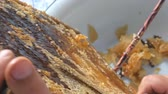 медовый : Hand using a knife to clog honeycombs with honey in a frame. Beekeeper Unseal Honeycomb.