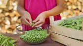 Young girl hands shelling peas, closeup - camera slide, track subject Wideo