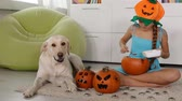 Young girl making a halloween jack-o-lantern - with her dog keeping company