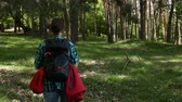 Woman with backpack walking in forest area among various trees - enjoying nature