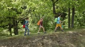 Hikers walking on forest edge - teenagers and woman backpackers climbing hill, sunny trees in background Wideo