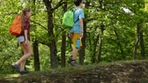 Hikers walking on forest edge - teenagers and woman backpackers outdoors, sunny trees in background, camera panning