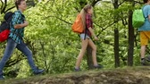Hikers walking on forest edge - teenagers and woman backpackers hiking in the woods, closeup, camera follows