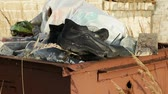 andarilho : Homeless find the footwear in waste container